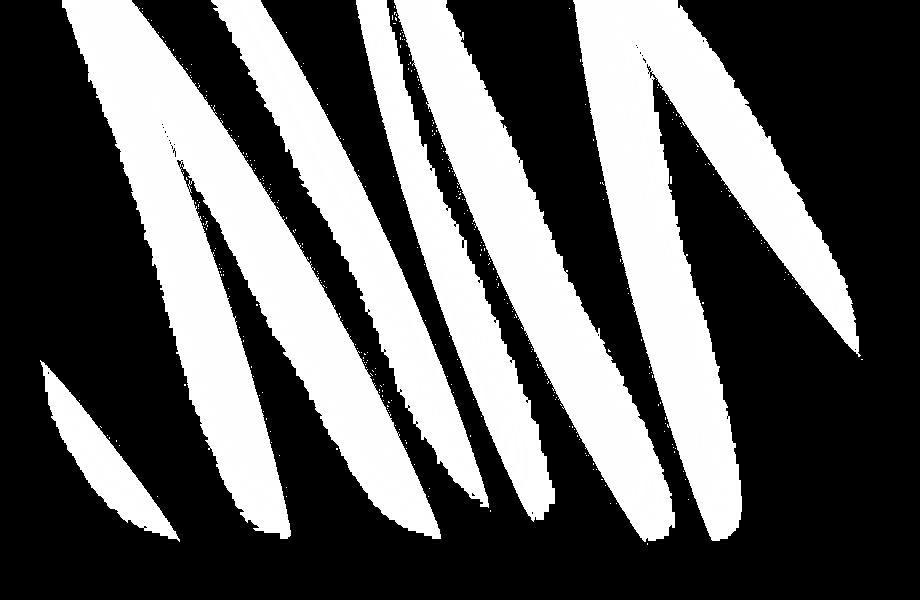 website wit seksspeeltjes in assen